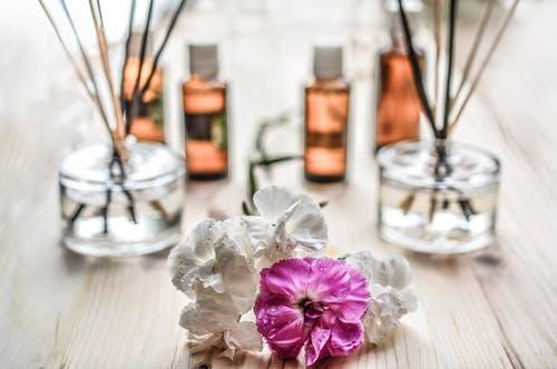 Perfumes Annayake