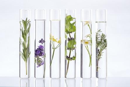 perfumes corine de farme